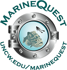 MarineQuest