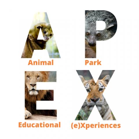 Animal Park Educational Experiences