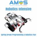Spring Break Robotics Intensive