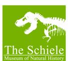 Schiele logo