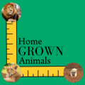 Home GROWN Animals